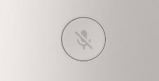 google home mute button