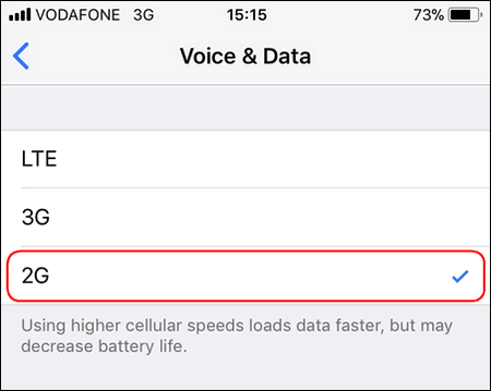iPhone Voice & Data 2G