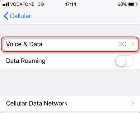 iPhone Voice & Data Settings