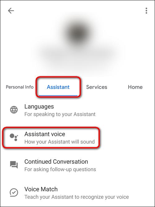 Assistant voice