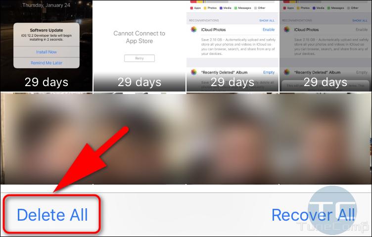 Apple Photos delete all