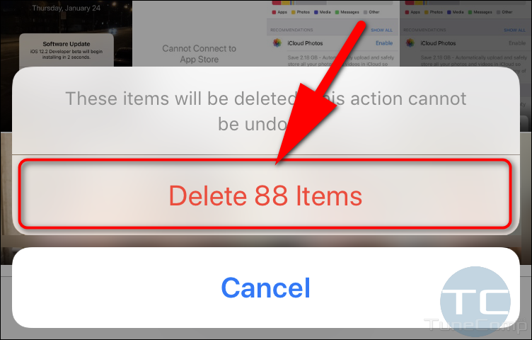 delete items from Recently Deleted album