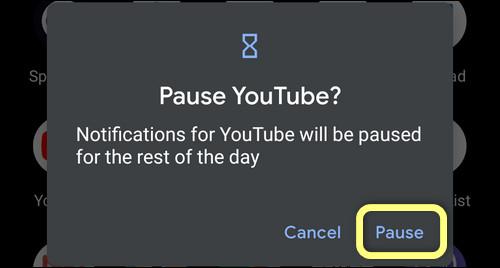 confirm pausing app