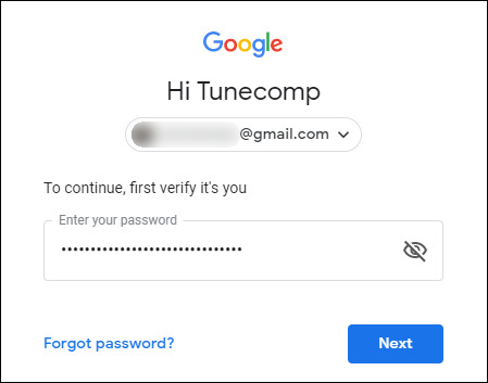 type password for Google Account